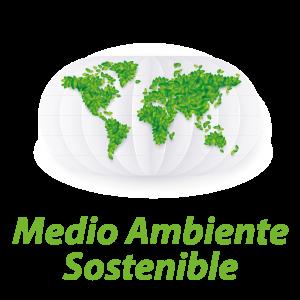 Medio Ambiente sostenible